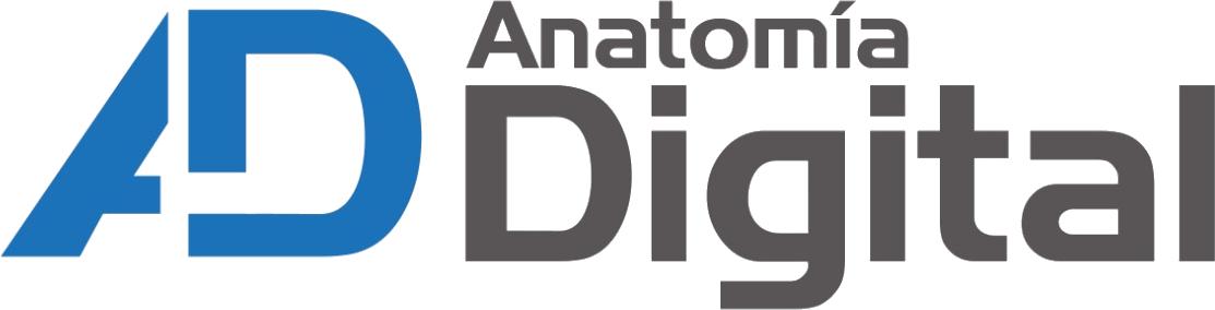 logo anatomia
